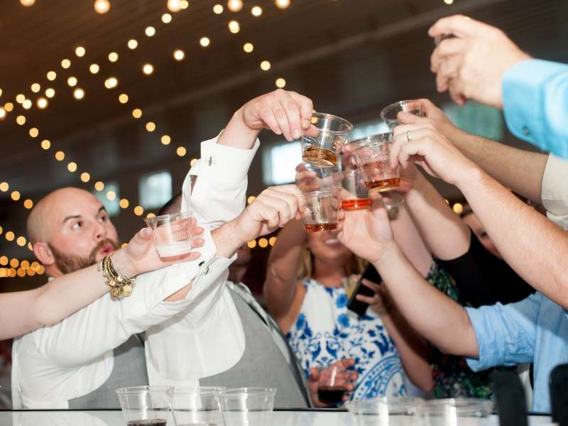 Wedding party toasting to the happy couple at The Stables in Whitehouse, OH
